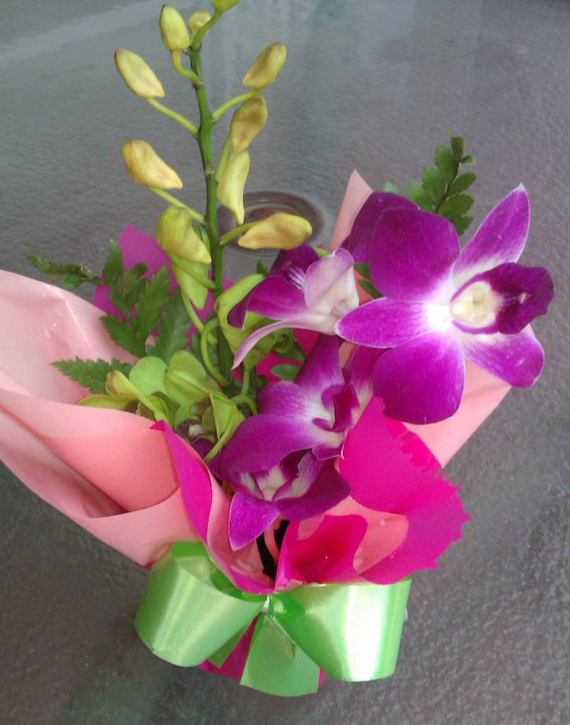 orchid-and-lavender