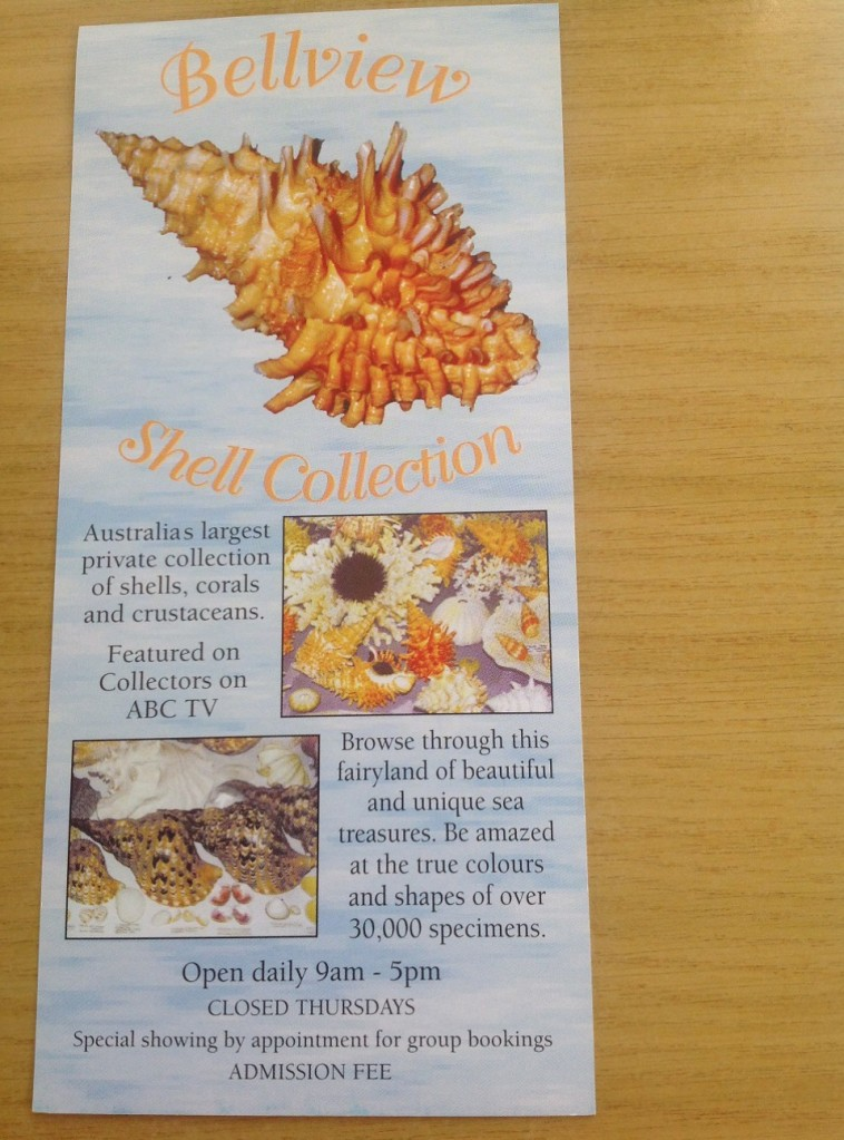 Bellview_Shell_Collection_Margaret_River