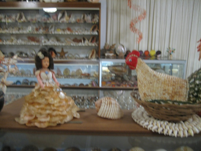 Bellview Shell Museum3_Margaret-River