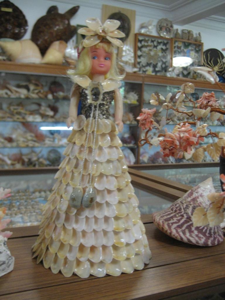 Bellview Shell Museum4_Margaret-River