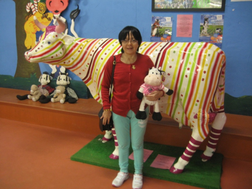 Candy_striped_Cow2_CandyCow_Cowaramup_2015