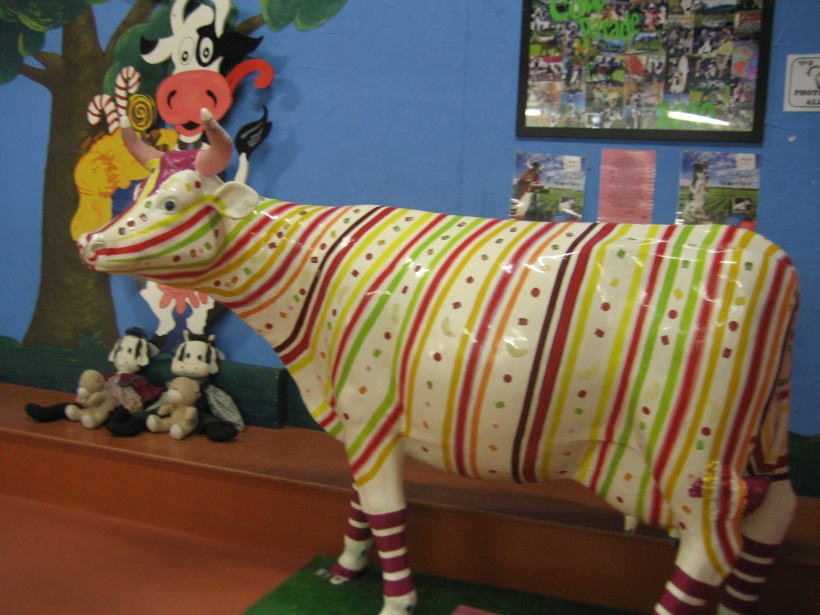 Candy_striped_Cow_CandyCow_Cowaramup_2015